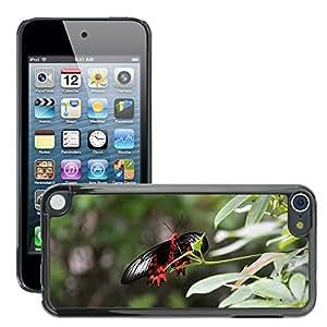 Etui Housse Coque de Protection Cover Rigide pour // M00133868 Mariposa tropical Casa // Apple ipod Touch 5 5G 5th