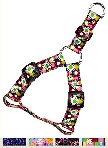 Daisy Harness Dog (Country Brook Petz Daisy Fields Featherweight Step-In Dog Harness - Extra Small)