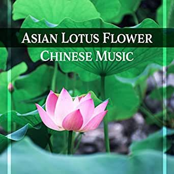 Asian Lotus Flower Chinese Music Oriental Sounds Relax