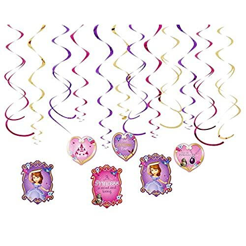 Sofia the First Party Decorations Amazoncom