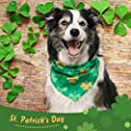 EXPAWLORER St. Patrick's Day Dog Bandanas - 2 Pack Triangle Bibs Scarf for Small to Large Dogs & Cats
