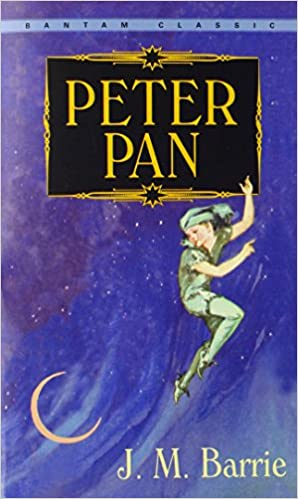 Image result for peter pan book