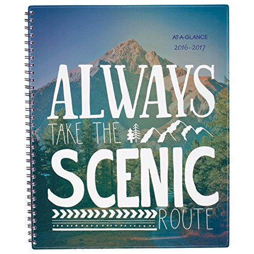 At A Glance Academic Year Monthly Planner   Appointment Book  July 2016   June 2017  8 1 2 X11   Design Selected For You May Vary  183 900A