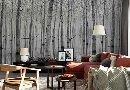 Photo wallpaper wall mural - Birch Forest Trees Water Reflection - Theme Forest & Trees - XXL - 13ft 8in x 9ft 6in (WxH) - 4 Pieces - Printed on - Photo Effect Reflection