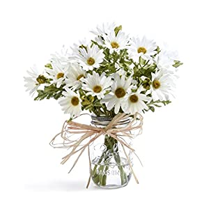 Petals Farmhouse Daisies Silk Arrangement - White 13