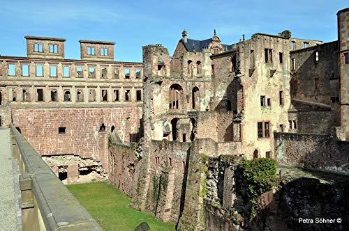 (Home Comforts Laminated Poster Castle Heidelberg Castle Moat Heidelberger Schloss Vivid Imagery Poster Print 11 x 17)