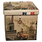 DinQ Vintage Classical Storage Ottoman, Storage Chest Suitable for Kids Room Living-Room Entryway Bedroom Coffee Room, ETC. (Paris & Car)