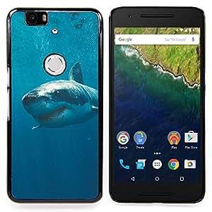 """Qstar Arte & diseño plástico duro Fundas Cover Cubre Hard Case Cover para Huawei Google Nexus 6P (El asesino del tiburón blanco en el océano"""")"""