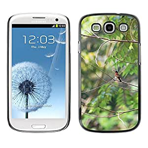 Hot Style Cell Phone PC Hard Case Cover // M00110784 Bird Fly Wings Feather Wildlife // Samsung Galaxy S3 S III SIII i9300