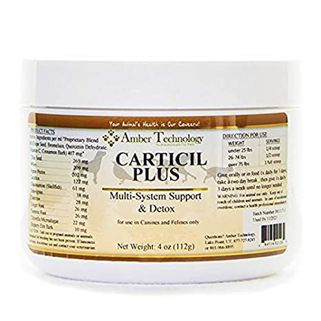 Amazon.com: carticil Plus 4oz- un suplemento a la ayuda en ...