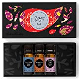 Yoga Essential Oil Set- 100% Pure Therapeutic Grade Essential Oils- 3/ 10 ml of Cleaning, Meditation and Quiet Time Synergy Blends by Edens Garden