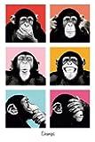Monkey Business Chimps Pop Art V PAPIER Singe Poster Dimensions 91.5 x 61cm (environ)
