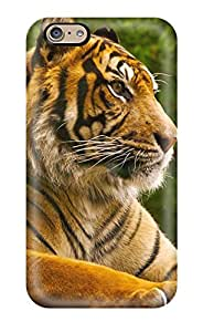 New Arrival Sumatran Tiger For Iphone 6 Case Cover