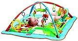 Tiny Love Gymini Kick and Play City Safari Mat