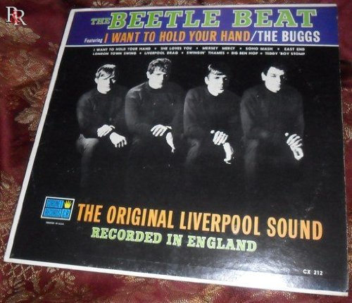 the-beetle-beat