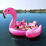 Party Bird Island - Flamingo