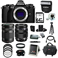 Olympus OM-D E-M5 Mark II Camera Body (Black) with ED 12-40mm f/2.8 Pro Lens + ED 40-150mm f/4.0-5.6 R Lens + 64GB Deluxe Accessory Bundle Noticeable Review Image