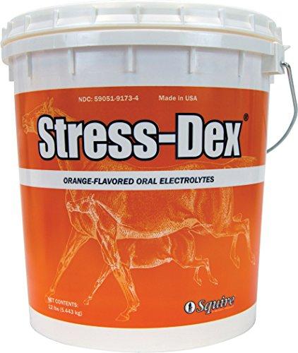 Neogen Squire D Stress-Dex Electrolyte Powder 580236 by Neogen Squire D (Image #1)
