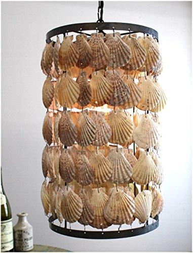 Round Cylinder Scallop Shells Nautical Chandelier Pendant Light w Iron Frame Beach High Designer Style ()
