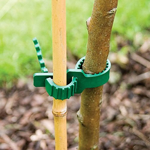 KINGLAKE 5 Pcs Tree Stake Supports Adjustable Tree Plant Ties (34cm/13.8 inch)