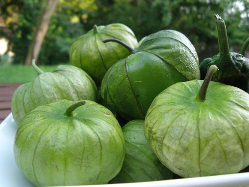 100+ Tomatillo Verde Seeds- Heirloom Variety-