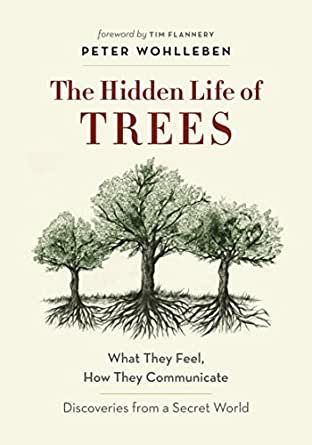 The hidden life of trees what they feel how they communicate digital list price 2499 fandeluxe Choice Image