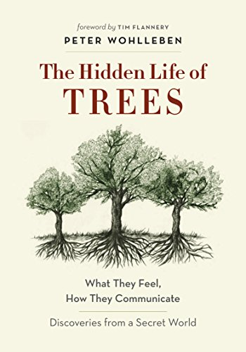 Pdf eBooks The Hidden Life of Trees: What They Feel, How They Communicate—Discoveries from A Secret World