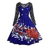 Wobuoke Women Halloween Christmas Lace Flowy Vintage Gown Printed Swing Dress