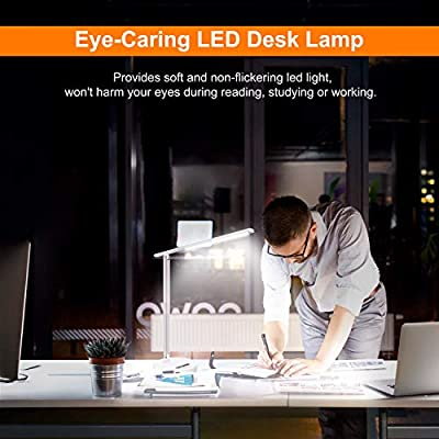 LEPOWER Metal Desk Lamp Dimmable, Color Changeable