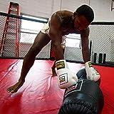 Combat Corner 50 lbs Throw, Ground and Pound