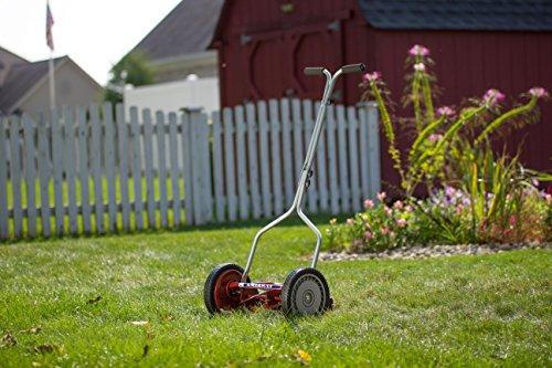 American Lawn Mower 1204-14 14-Inch Push Reel Lawn Mower