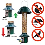 Squirrel Proof Wild Bird Feeder - Mixed Seed / Sunflower Heart Feeder - Roamwild...