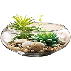 "7.75"" Clear Round Glass Terrarium With Faux Succulent Cactus Plant Flower Pot With Stones For Outdoor Garden Patio Terrace Indoors Kitchen Window Sill Office Living Room Tabletop Desktop Spring Decor"