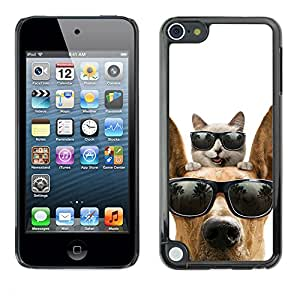Vortex Accessory Carcasa Protectora Para Apple Ipod Touch 5 - Cat Great Dane Sunglasses Shades Summer -
