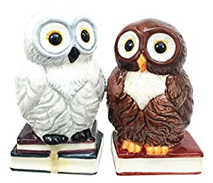 Forest Snow and Brown Owl Bibliography Of Wisdom Salt Pepper Shaker Set Ceramic Home and Kitchen Accessory