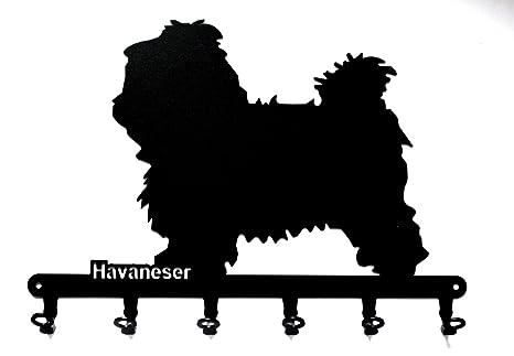 Schl/üsselboard 6 Haken Havaneser * steelprint.de Schl/üsselbrett//Hakenleiste