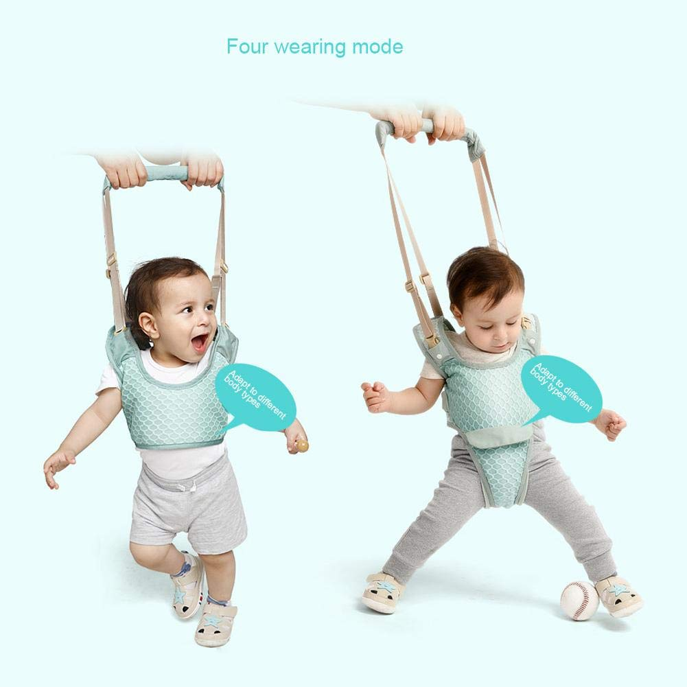 die lernt Handheld-Baby-Wanderer-Kleinkind-gehende Assistenz-Sicherheit Helfer-Breathable und bequemes gehendes erlernenhilfsleitfaden f/ür Baby-Kleinkind 6 bis 36 Monate zu Gehen
