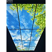 LED sky ceiling panel light, 1200X600mm size, 48Wattage, natural white light