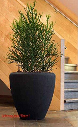 Blumenübertopf Polystone Couple aus gemahlenen Stein und Kunststoff, nur für den Innenbereich geeignet. Farbe Schwarz, Ø 40cm Höhe 40cm