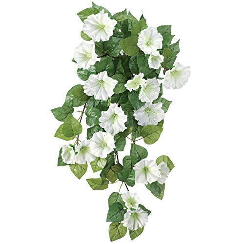 OakRidge Petunia Hanging Stem OutdoorTM ()