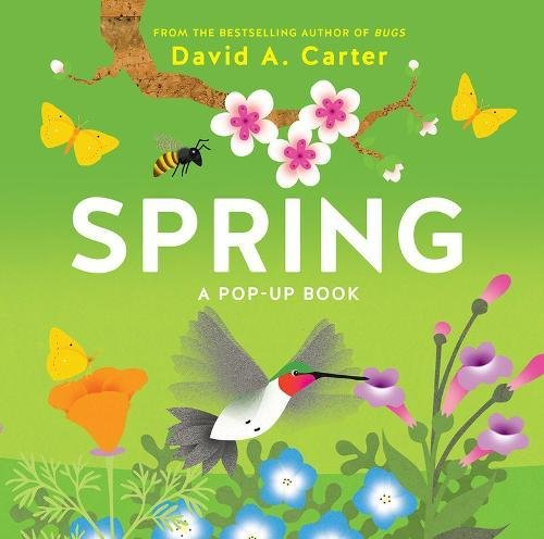 Spring: A Pop-up Book (Seasons Pop-up)