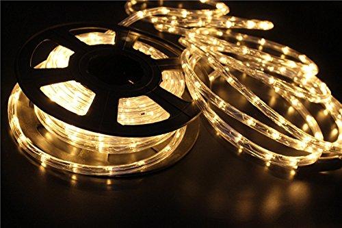 PYSICAL 110V 2-Wire Waterproof LED Rope Light Kit for Background Lighting,Decorative Lighting,Outdoor Decorative Lighting,Christmas Lighting,Trees,Bridges,Eaves (50ft/15M, Warm White)
