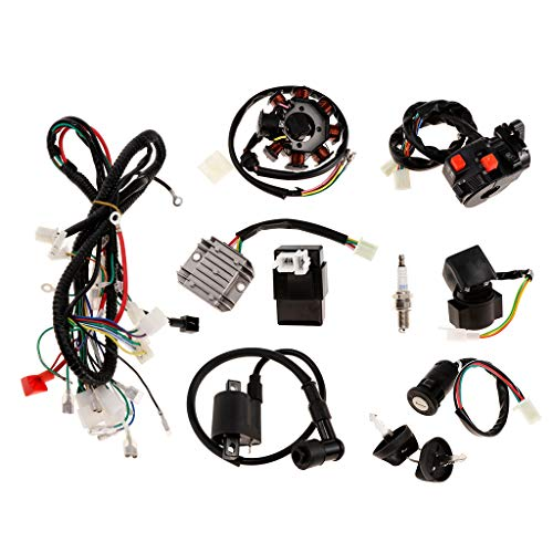 perfk Complete Electrics CDI Coil Wiring Loom Harness Kit for 150cc 250cc ATV: