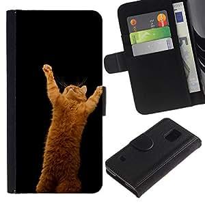 All Phone Most Case / Oferta Especial Cáscara Funda de cuero Monedero Cubierta de proteccion Caso / Wallet Case for Samsung Galaxy S5 V SM-G900 // CUTE FUNNY - ORANGE CAT