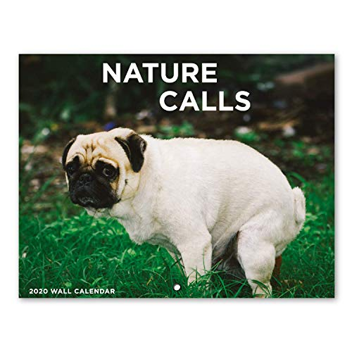 "2020 Wall Calendar - Pooping Dogs 2020 Calendar with Thick Paper, Large 11"" x 17"" When Open, Gag Gifts"