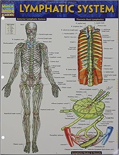 Lymphatic System Quick Study Academic 9781423233183 Medicine
