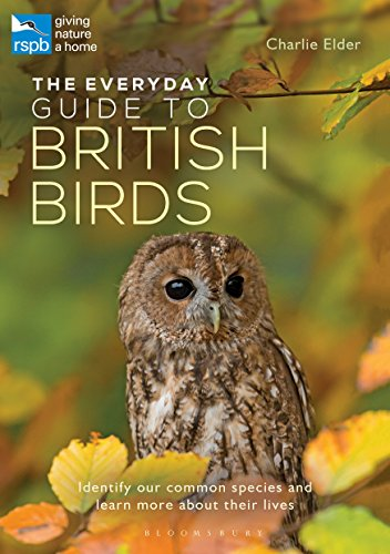 The Everyday Guide to British Birds: Identify our common species and learn more about their ()