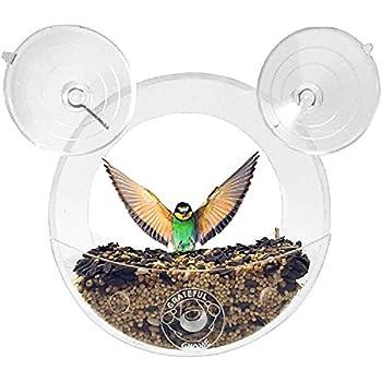 Grateful Gnome - Original Circular Window Bird Feeder - Clear Acrylic House for Small Wild Birds Like Finch and Chickadees