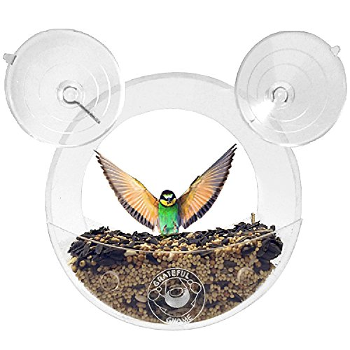Grateful Gnome - Original Circular Window Bird Feeder - Clear Acrylic House for Small Wild Birds Like Finch and Chickadees (Circular Feeder Bird)