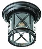 Trans Globe Lighting 5128 ROB Outdoor Chandler 9.5'' Flushmount Lantern, Rubbed Oil Bronze